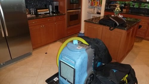 mold insurance claims south florida
