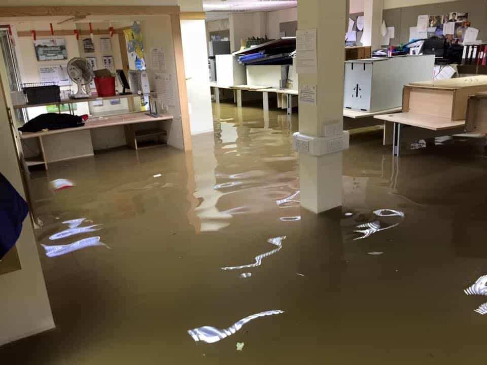 water damage adjuster florida